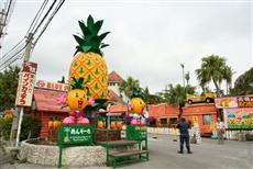ナゴパイナップルパークの画像