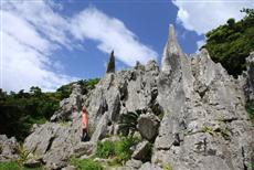 2億年の時が刻んだ奇石が林立する大石林山