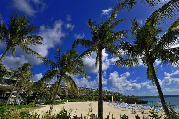 三日月形のビーチにパームツリーが茂る、ムーンビーチの景観