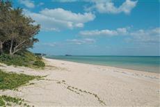 どこまでも続く天然の砂浜が魅力的な新原ビーチ。(写真/黒田史