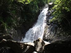 落差26メートルを誇る比地大滝は本島最大(写真提供/国頭村)