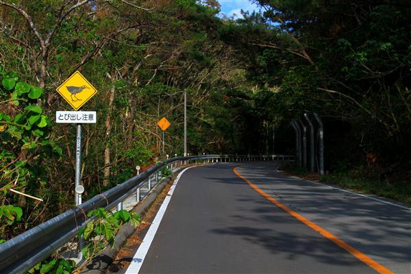 国頭村や東村には、ヤンバルクイナへの注意喚起の看板がある