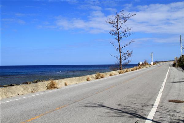 国道58号のほとんどの区間で、海を見ながらドライブが楽しめる